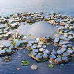 Can Engineers Build Floating Cities to Save Island Nations?