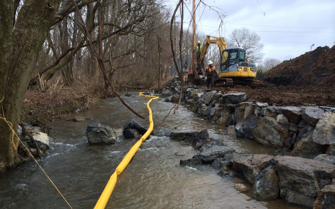 Engineers and Wetland Scientists Face Challenges with Regulatory Changes to the Clean Water Act