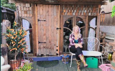 Tiny Sheds, Big Ideas: The Amazing Designs of 2020's Shed of the Year