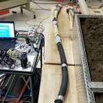 From Worms to Clams, Construction Robot Research Uses Nature as a Guide