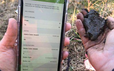Wetlands Documentation App Ecobot Acquires WetForm