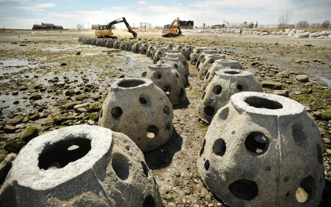 Stratford Shoreline Protection Project Gets National Recognition