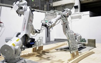 Worth Building Complex Structure: Robots and Humans Collaborate to revolutionize Architecture