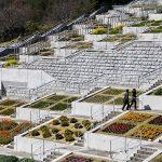 Tadao Ando – The Hundred Step Garden at Awaji Yumebutai