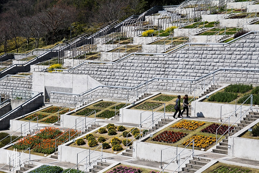 Tadao Ando – The Hundred Step Garden at Awaji Yumebutai